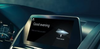 BMW in-car voice controller