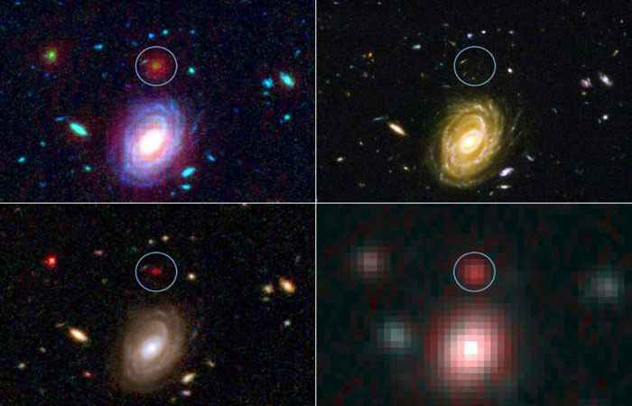 Big Baby Galaxies