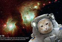 New NASA app let take space selfies