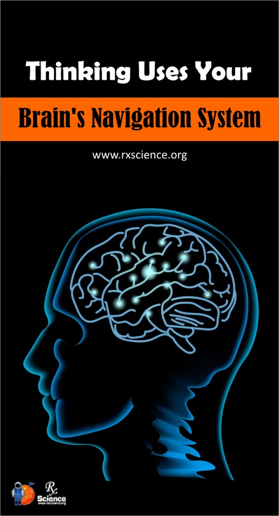 Scientists are recommending that the human manner of thinking depends on the brain navigation framework.